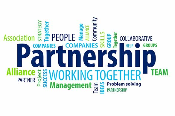 partnership business structure