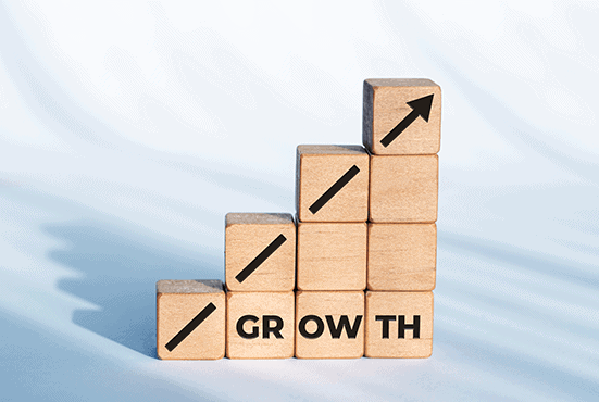 Beginners Guide to Growing your Business